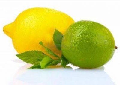 Sadat Agro - Lemon - Eureka 1