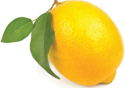 Sadat Agro - Lemon - Eureka 2