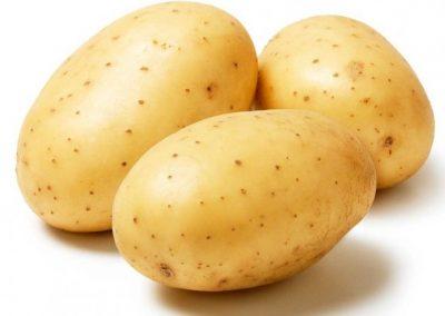 potatoes-main__large