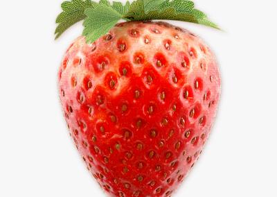 strawberry(3)_01