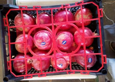 Pomegranate 2-Sadat agro - Sadat global