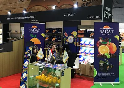 Sadat Agro - sadat global p