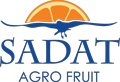 Sadat Agro - Fruits