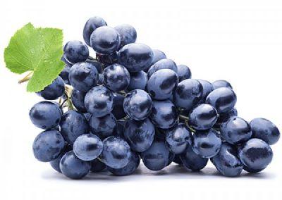 Sadat Agro - Autumn Royal Grapes 7