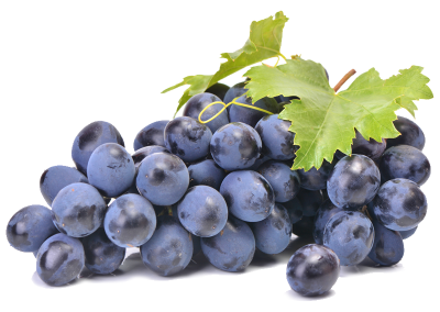 Sadat Agro - Autumn Royal Grapes 8