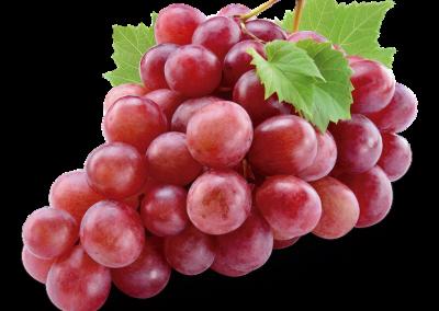 Sadat Agro - Flame Grapes 1