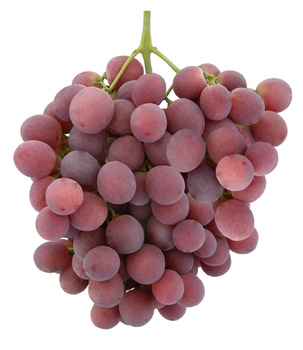 Sadat Agro - Red Globe Grapes 1