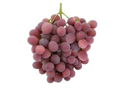 Sadat Agro - Red Globe Grapes 4