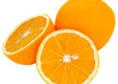 Sadat Agro - Valencia Oranges 2