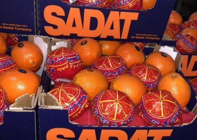 Sadat Agro Sadat global