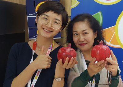 Pomegranate 3-Sadat agro - Sadat global