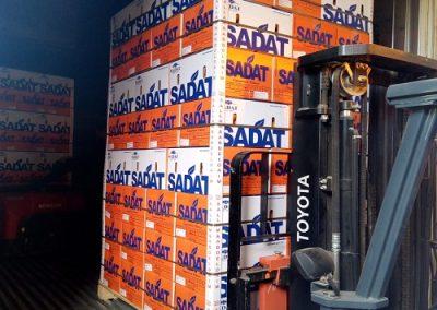 - 12 Egyptian Valencia Citrus Oranges Sadat agro - Sadat global