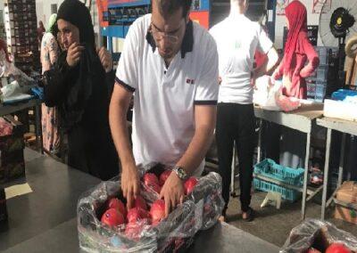 10 0 Egyptian Pomegranates Sadat agro - Sadat global