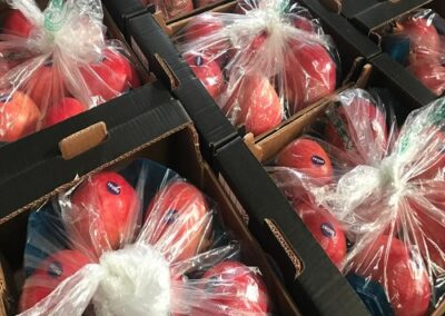10 Egyptian Pomegranates Sadat agro - Sadat global